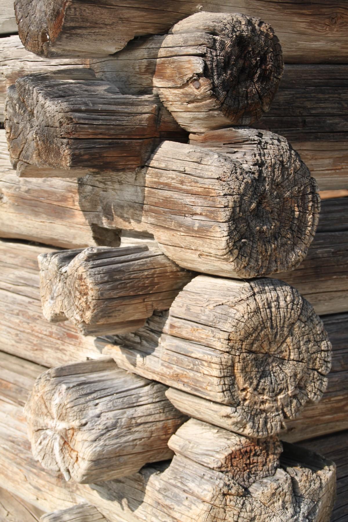 images gratuites arbre roche tronc artisanat bois d