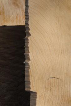 Free Images Tree Floor Log Lumber Circle Hardwood
