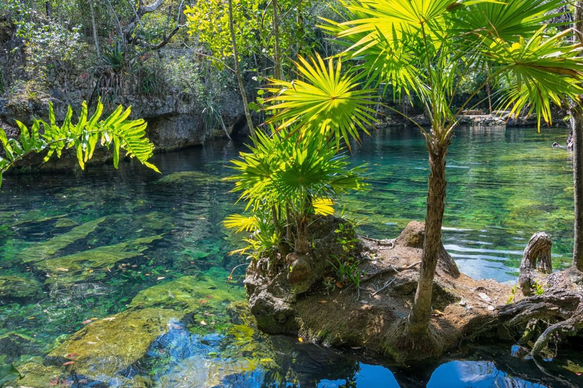 cenote media luna playa akumal quintana roo riviera maya méxico
