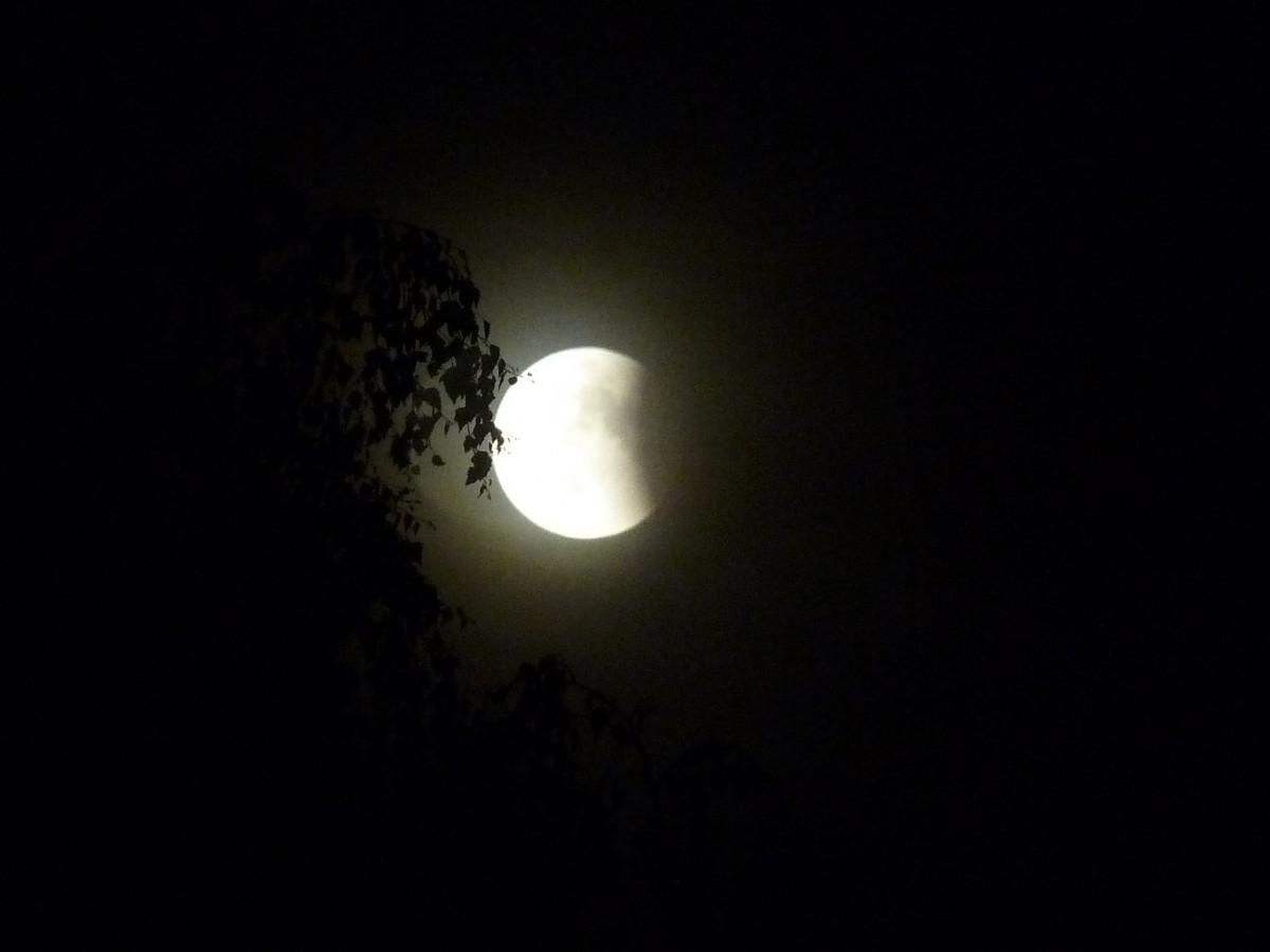 оптика как сфотографировать луну в темноте слову, поклонники модели