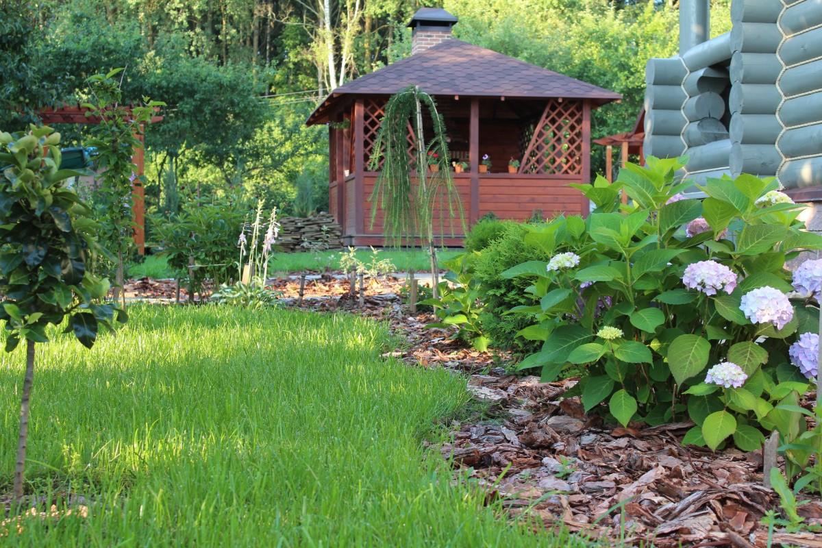 lawn flower pond cottage backyard botany garden woodland yard ecosystem beautification planting of greenery landscape design outdoor structure