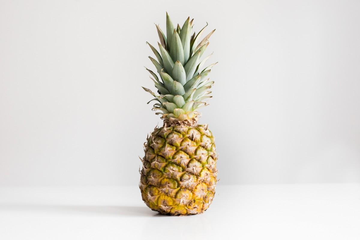 plante fruit aliments produire ananas Espace blanc plante à fleurs ananas Broméliacées Plante terrestre