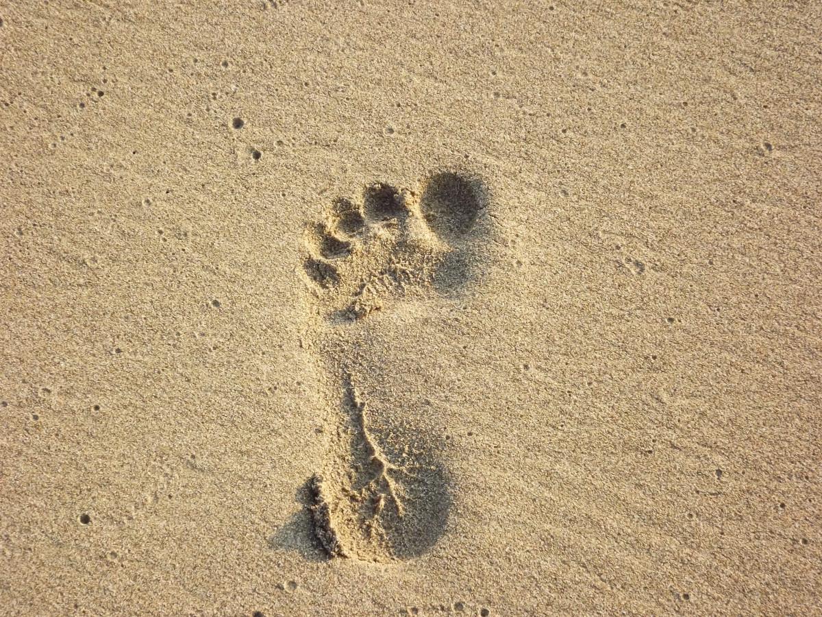 beach, sand, wood, texture, footprint, footstep, number, summer, foot, soil, human, material, barefoot, foot print, sand print