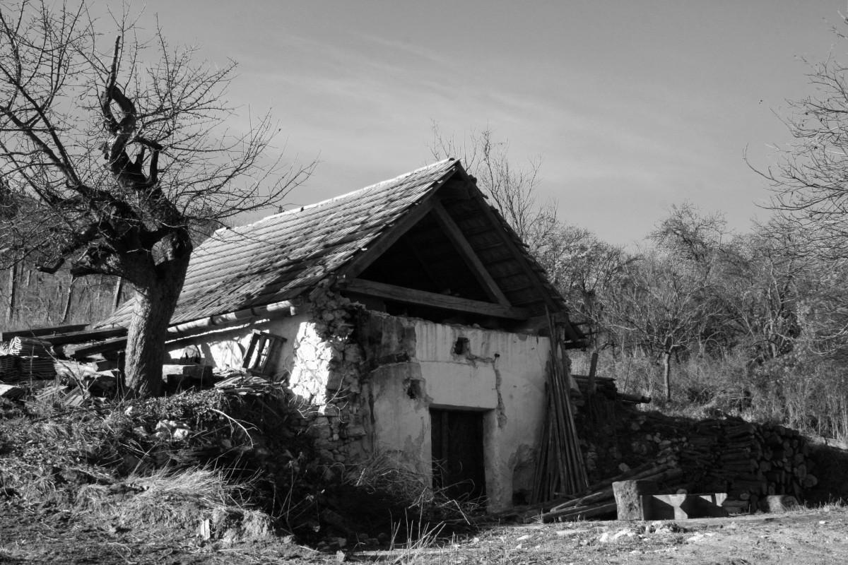 images gratuites arbre neige hiver noir et blanc maison b timent village cabane. Black Bedroom Furniture Sets. Home Design Ideas