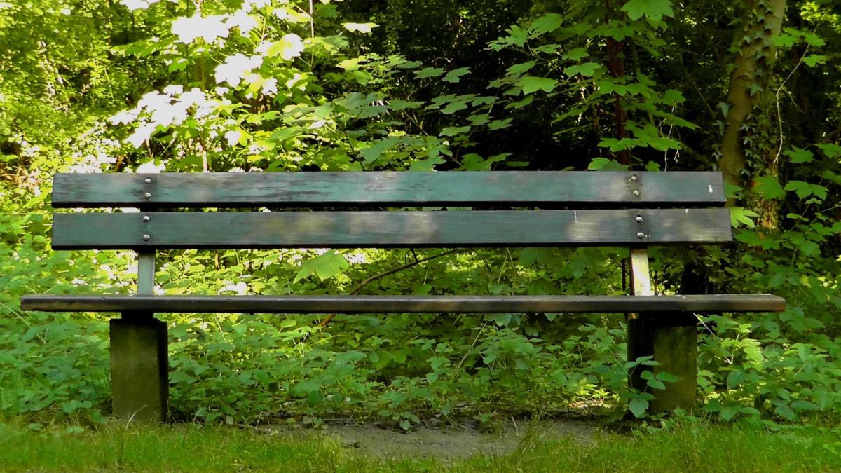 Картинки скамейка в парке: 900+ Бесплатные Парк Скамейка ...