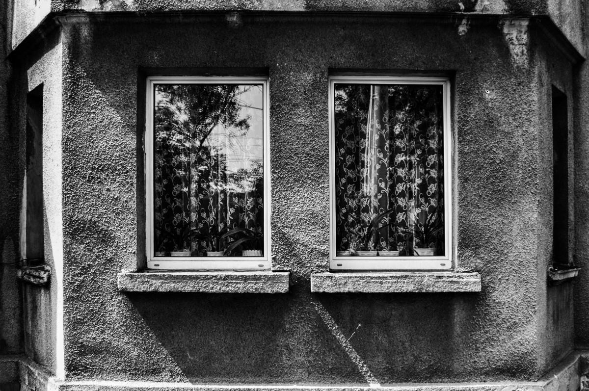 images gratuites noir et blanc la photographie maison