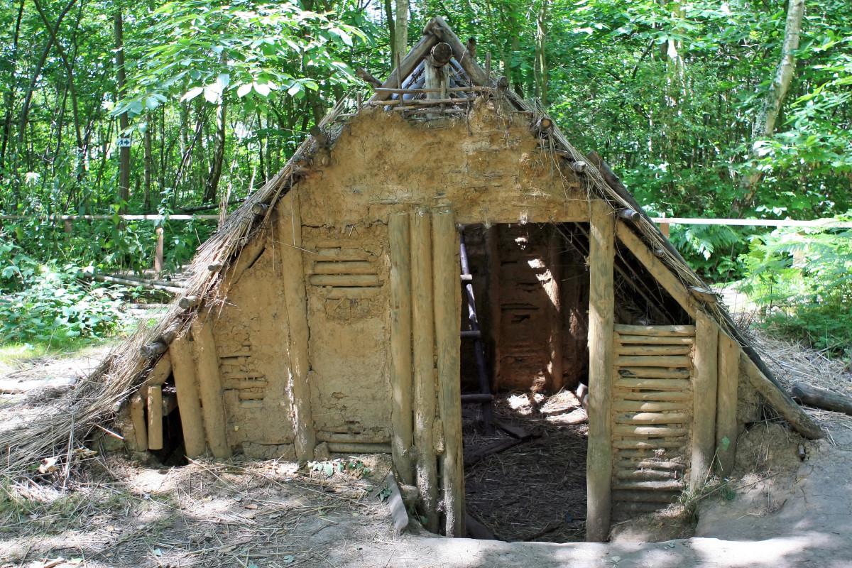 Fotos gratis paisaje bosque persona ligero mujer for Piani casa bungalow cottage