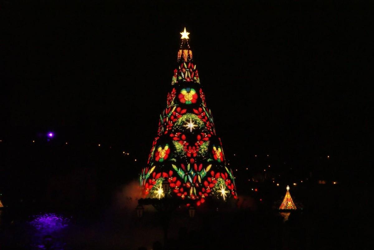 tree night christmas christmas tree christmas decoration christmas lights - Light Up Christmas Tree