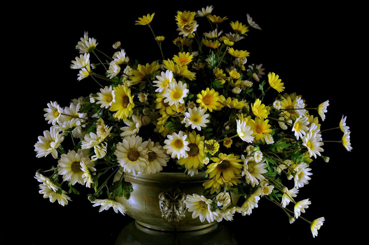 pot fleur interieur