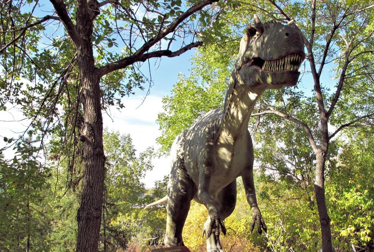 Tamaño-estatura-T-rex-carnívoro