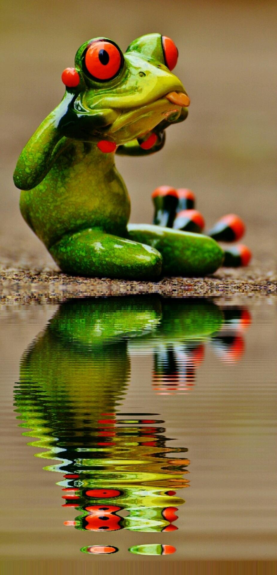 Своими, красивые лягушки открытки