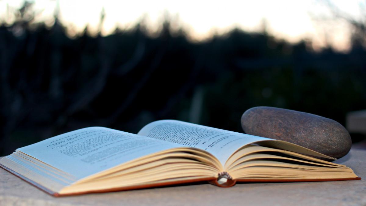 scrittura libro leggere pietra libro aperto marca Testi