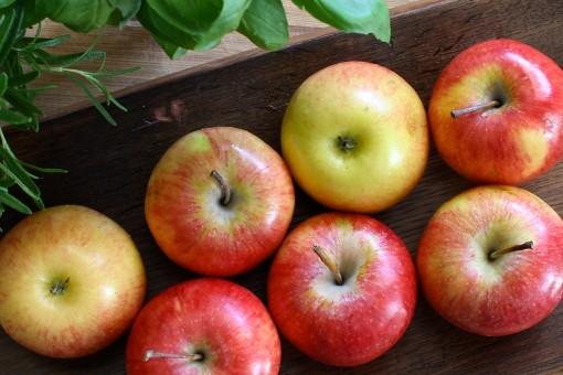 яблоко, растение, дерево, фрукты, лето, Пища