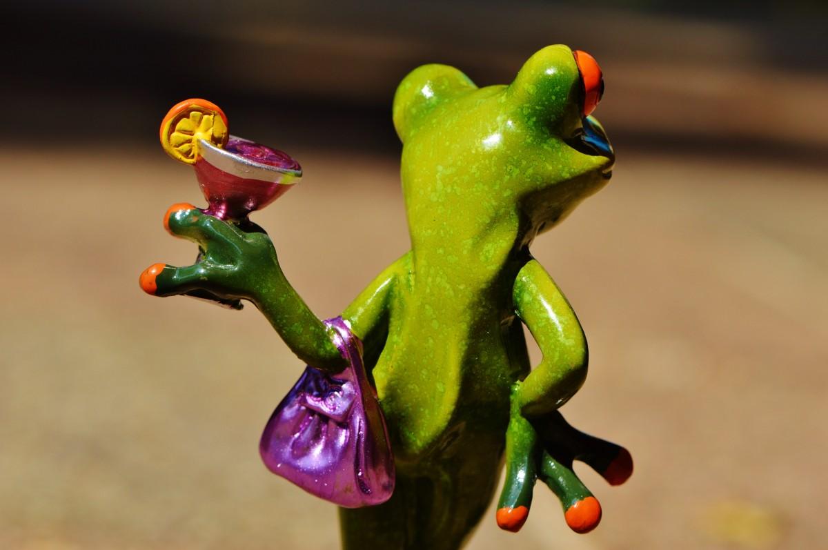 недорого картинки лягушка пьет коктейль нашей
