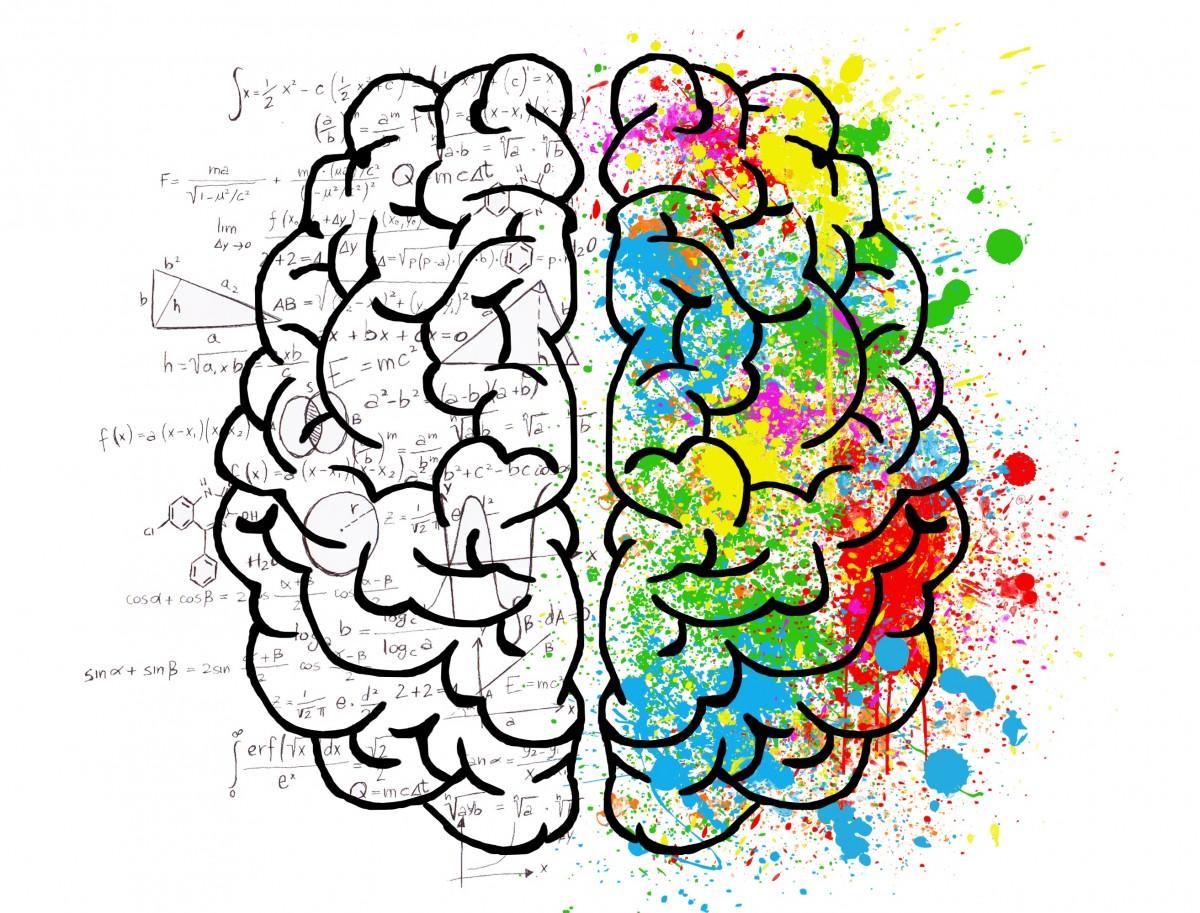 cerebro mente psicología idea copas amor dibujo doble personalidad pensamiento caos duda mente abierta materia gris inseguridad ansiedad Ideas comparación fantasía mente cerrada cabeza Pensamientos concentración Creatividad color original pintar alegría Positividad matemáticas lógica cálculo computadora precisión