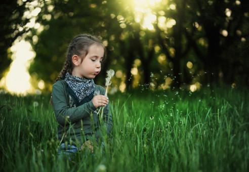 Fotoğraf : doğa, çimen, kişi, müzik, kız, kadın, çim