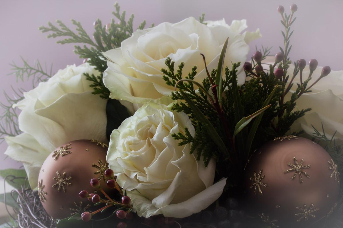 Роше открытки, цветы новогодние картинки