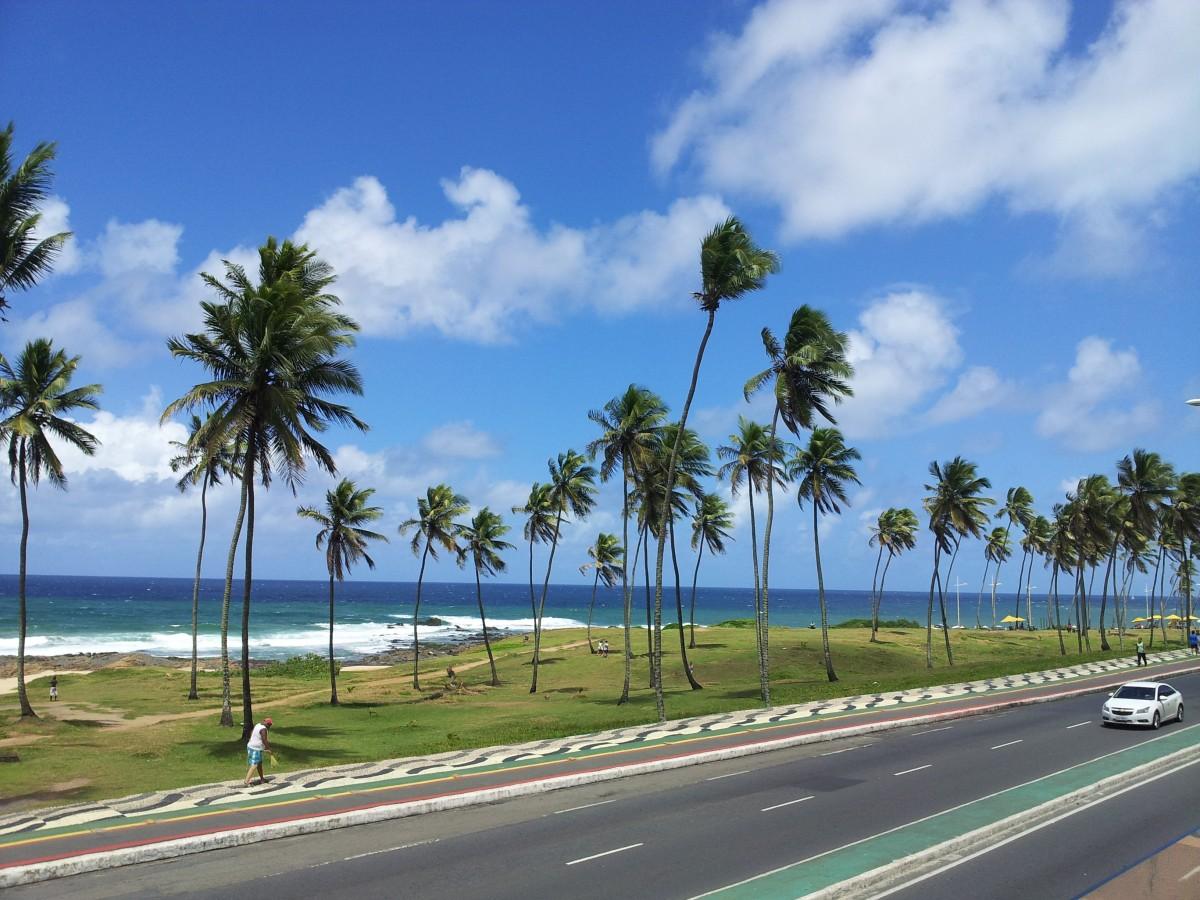 когда скрылся, фото дорога пальмы двух сторон меленьком
