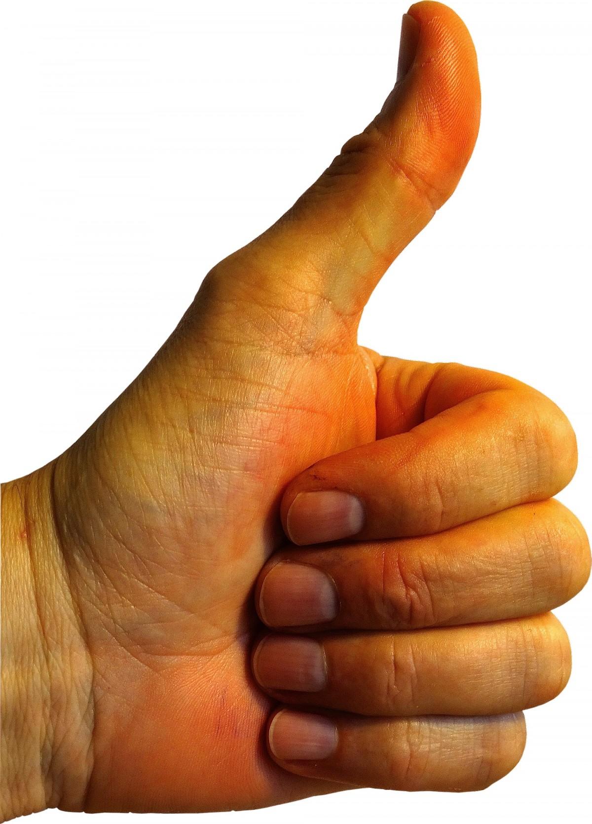 картинки руки с большим пальцем вверх ворон
