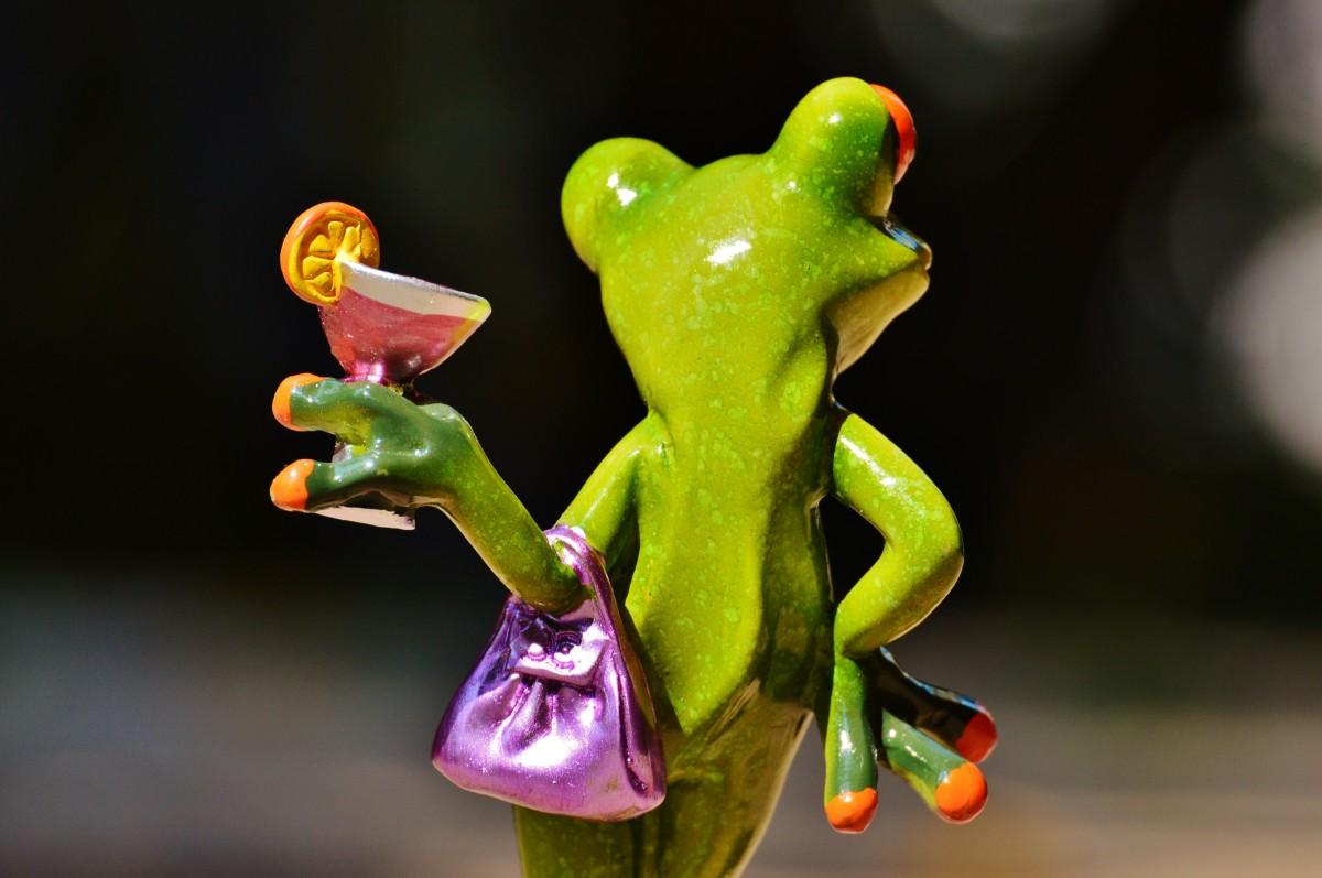 картинки лягушка пьет коктейль того, литература