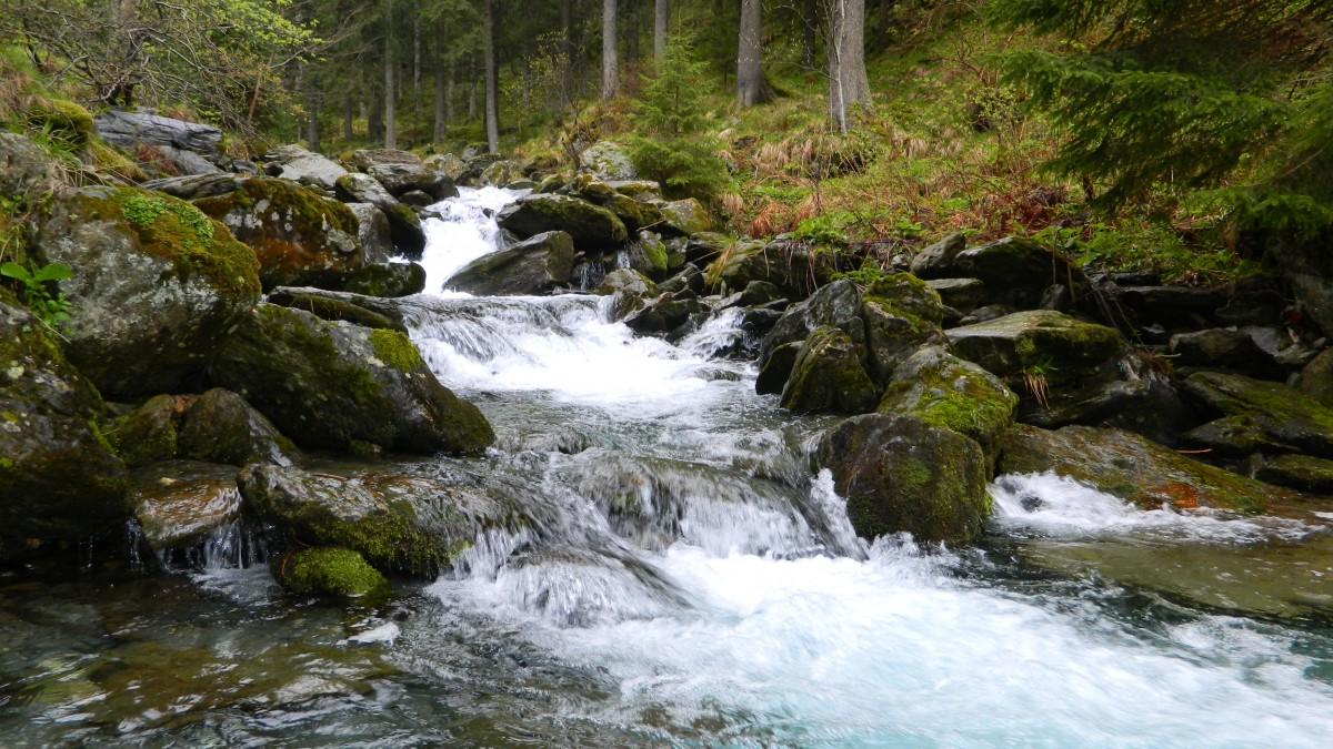 Images gratuites paysage eau r gion sauvage montagne for Parc sauvage 78