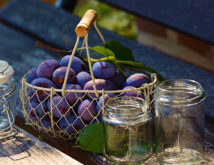 Free Images : fruit, flower, food, green, produce, garden ...
