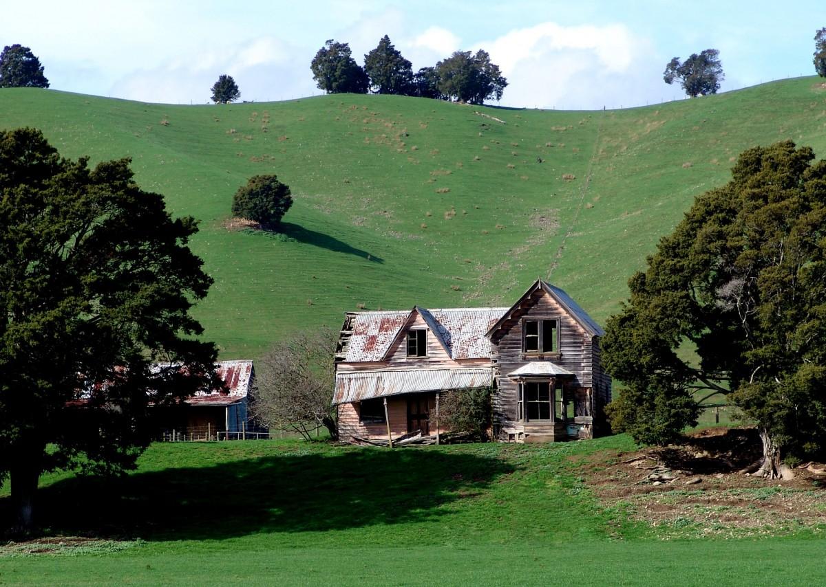 Images gratuites paysage arbre herbe montagne for Agrandissement maison zone verte