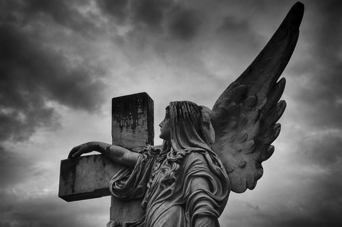 Kostenlose Foto : Flügel, Wolke, Schwarz Und Weiß, Himmel