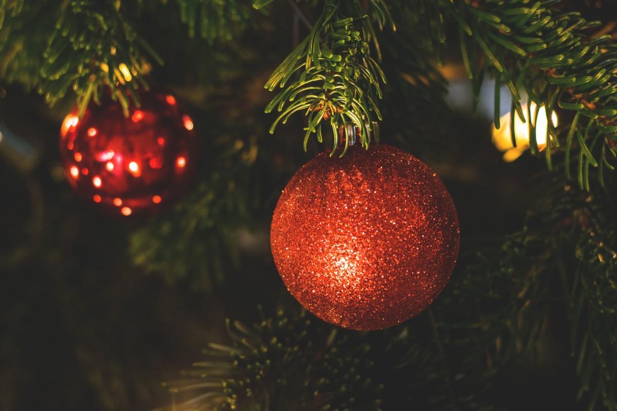 Kostenlose foto : Baum, Ast, Licht, Urlaub, Weihnachten, Tanne ...