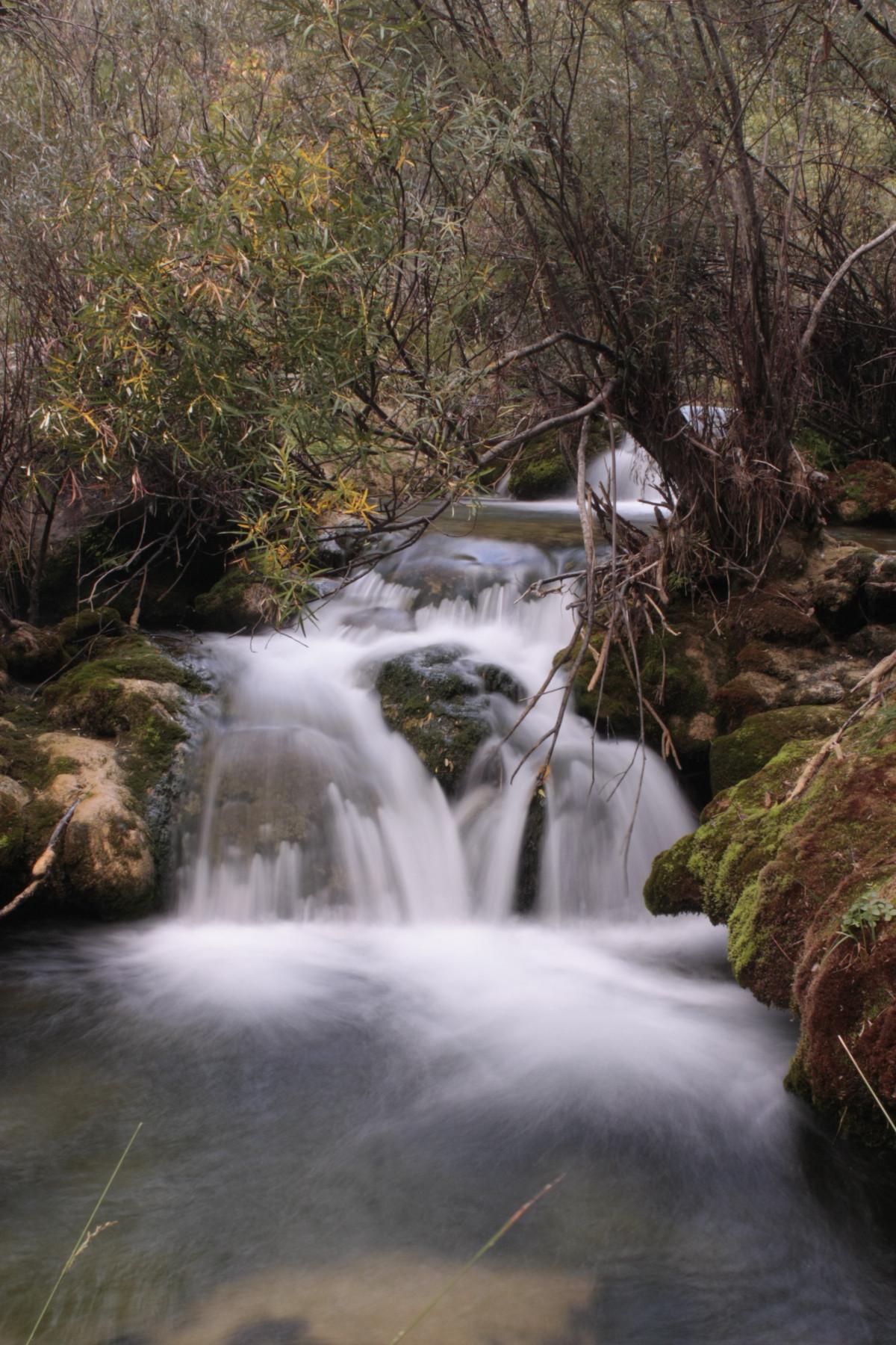 images gratuites eau la nature for t roche cascade ruisseau r gion sauvage feuille. Black Bedroom Furniture Sets. Home Design Ideas