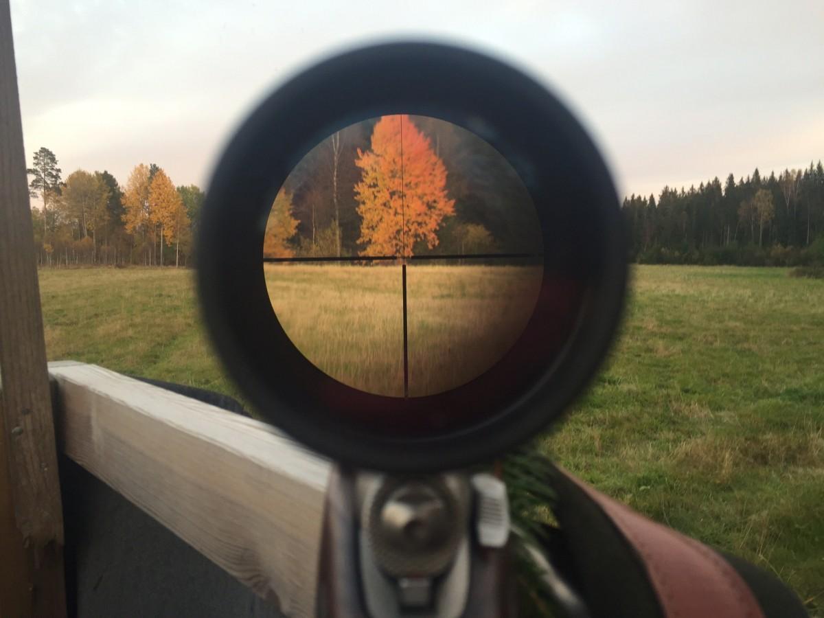 Poze : conducere, soldat, toamnă, filmare, concentra, arme, vânătoare,  captură de ecran, telescopic vedere 2048x1536 - - 593102 - Poze frumoase -  PxHere