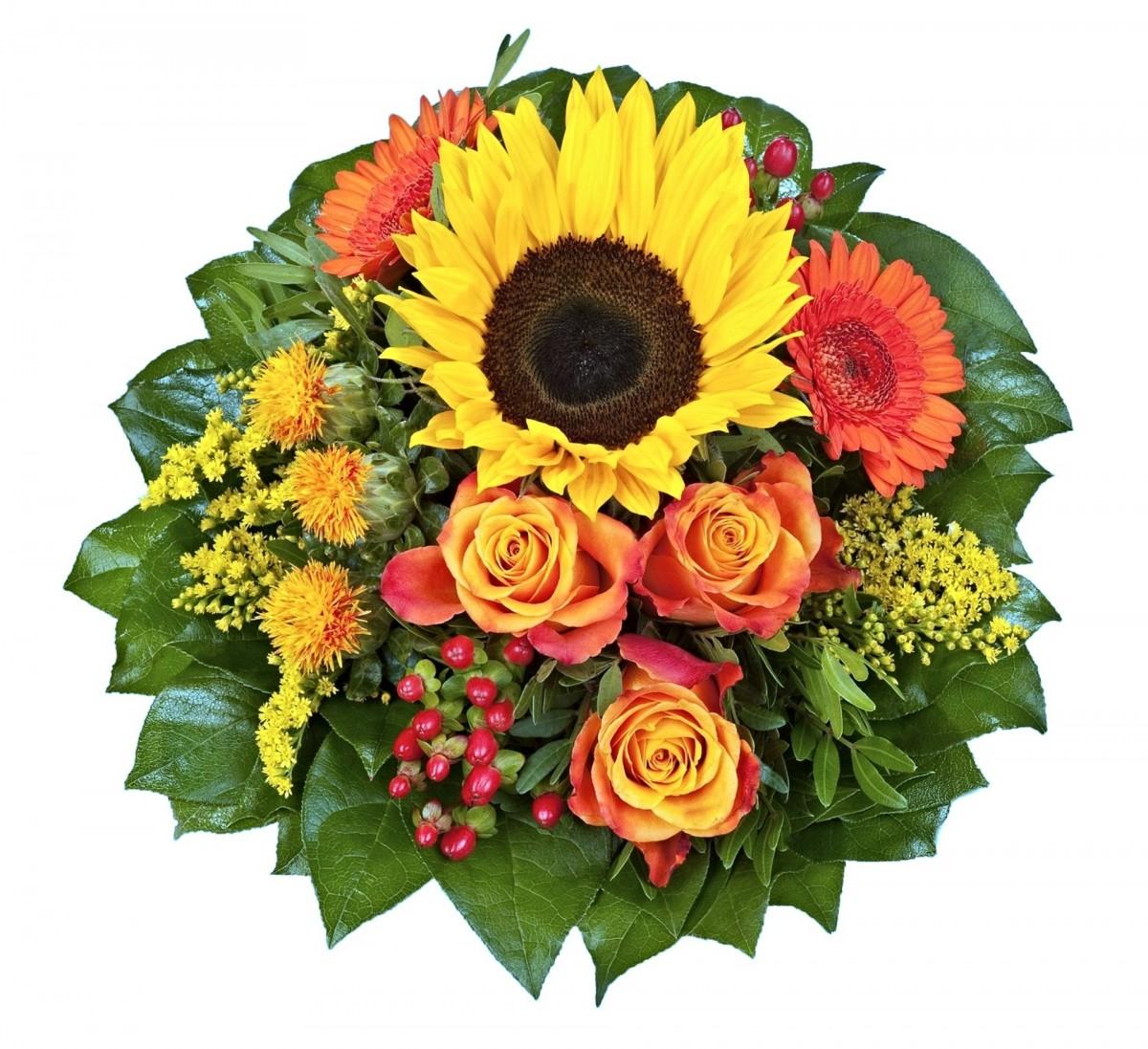 kostenlose foto blume bl tenblatt rose sonnenblume gerbera floristik bl hende pflanze. Black Bedroom Furniture Sets. Home Design Ideas