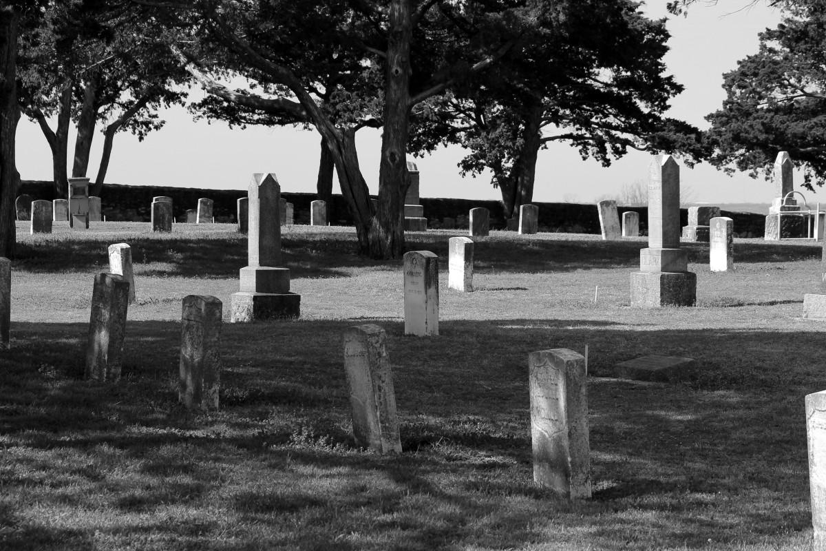 Fotos gratis rbol en blanco y negro banco palacio for Cementerio parque jardin del sol pilar