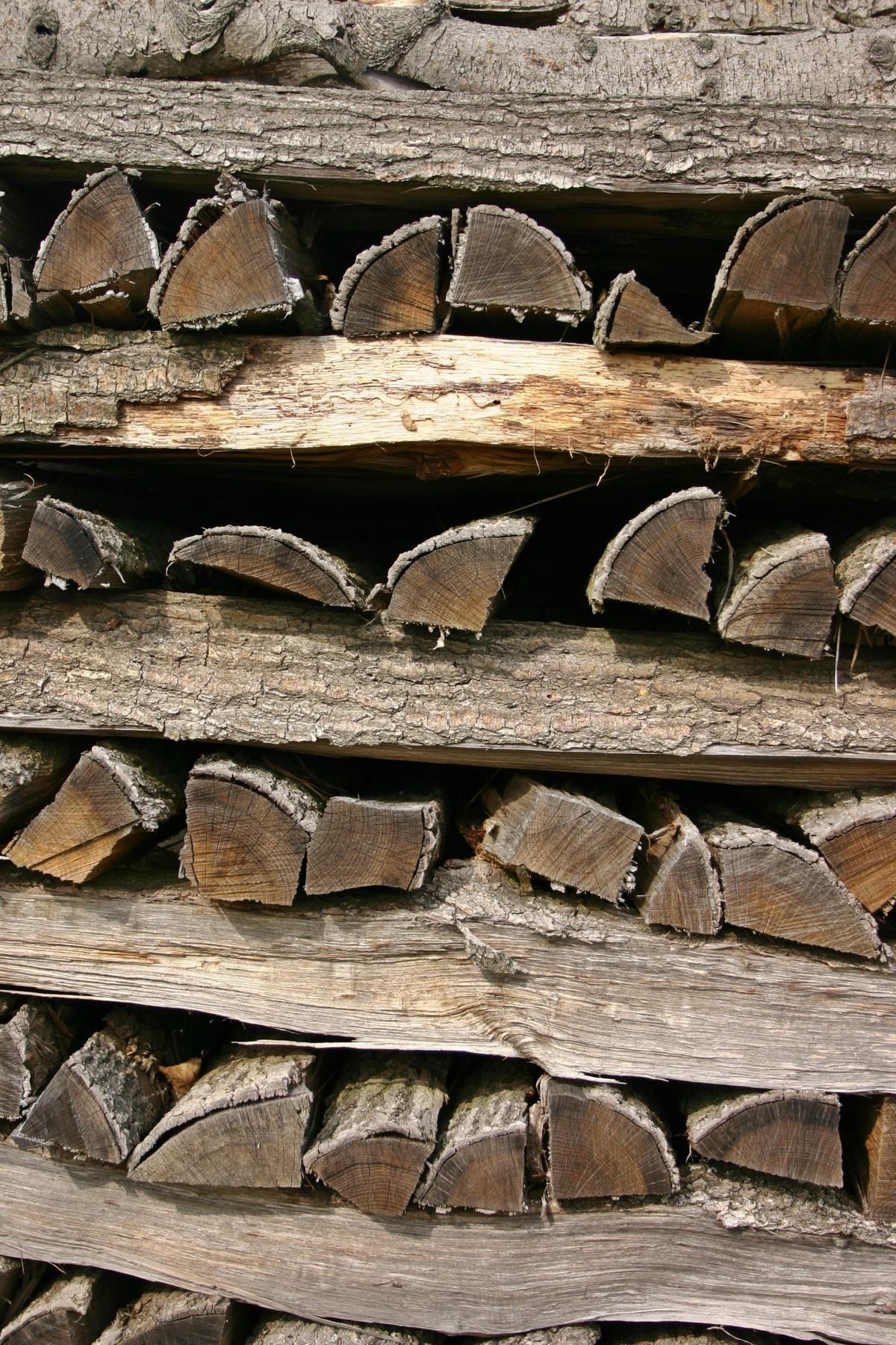 Images gratuites arbre la nature roche branche texture feuille tronc b che l 39 automne - Arbre fruitier comme bois de chauffage ...