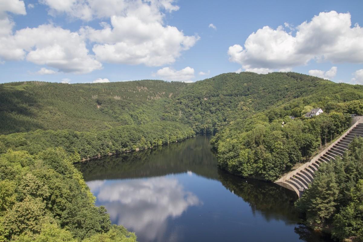 Fotos gratis paisaje rbol agua bosque cielo lago for Estanque reflectante