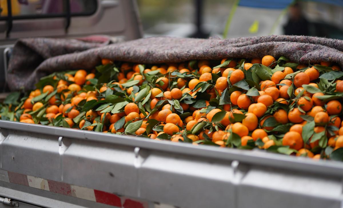 Kostenlose foto : Natürliche nahrungsmittel, Lebensmittel ...
