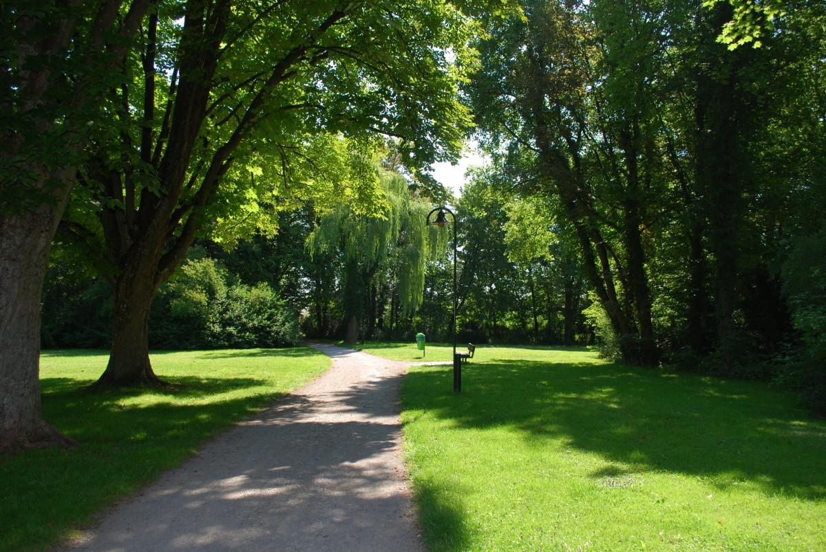 free images landscape tree path plant trail bridge lawn meadow view walkway walk. Black Bedroom Furniture Sets. Home Design Ideas