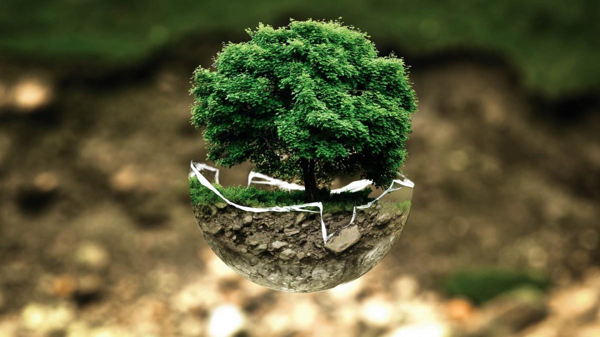 macam-macam cabang biologi dan penjelasannya