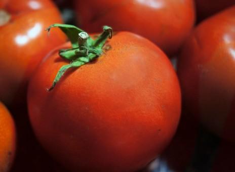 природа, растение, фрукты, Спелый, Еда, Пища