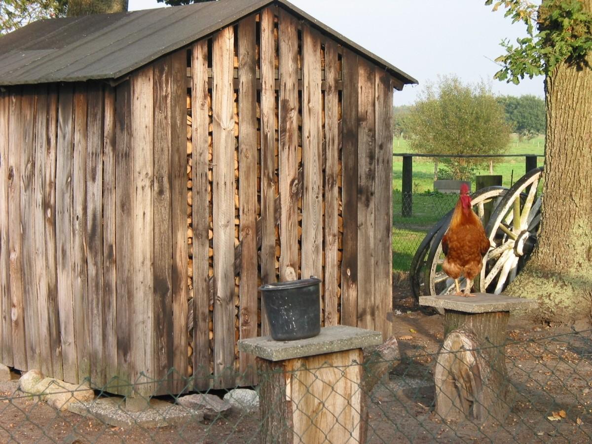 free images wood building barn shed hut shack cottage