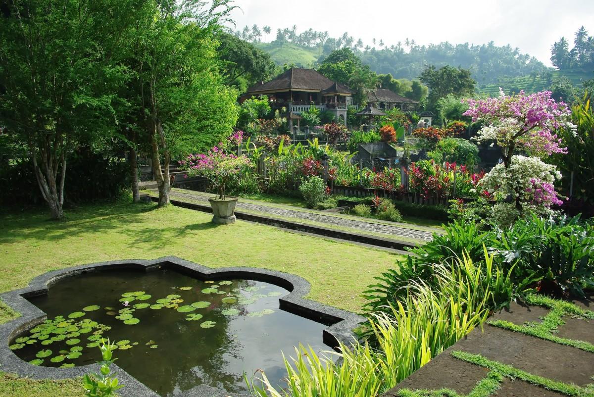 Images gratuites paysage eau pelouse fleur courant for Cours de paysagiste gratuit