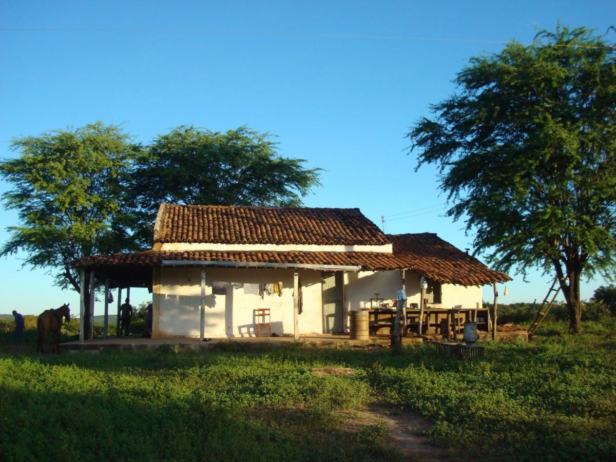 gambar vila rumah desa pondok peternakan milik