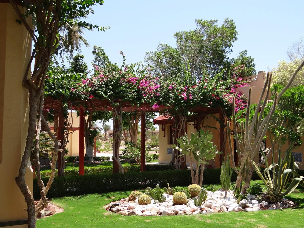 Images gratuites caf villa maison fleur b timent for Villas de jardin port glaud