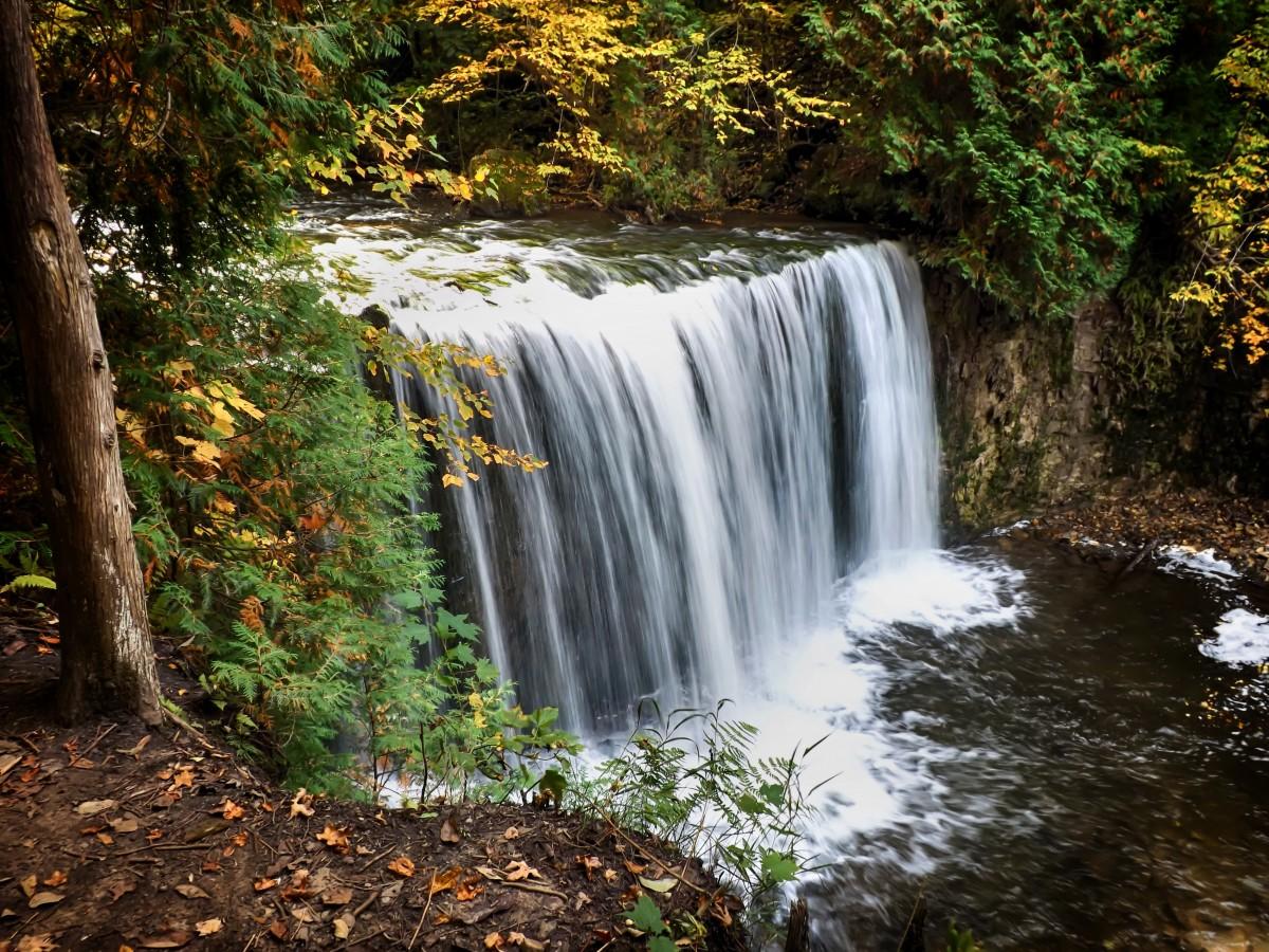 images gratuites paysage arbre eau la nature cascade feuille rivi re courant l 39 automne. Black Bedroom Furniture Sets. Home Design Ideas