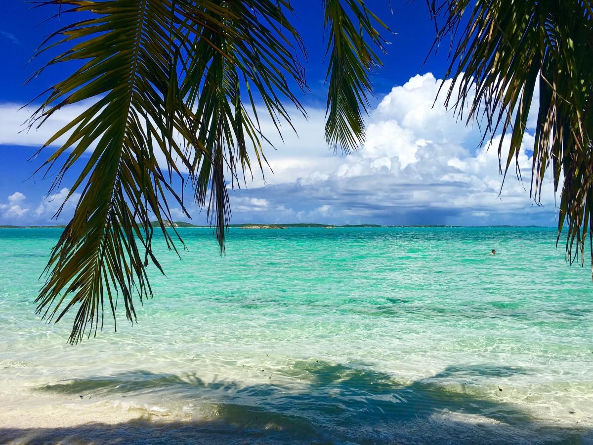 Wallpaper Caribbean Sea Beach Sunset Palm Trees Hd 5k: Free Images : Beach, Sea, Coast, Tree, Sand, Ocean, Sky