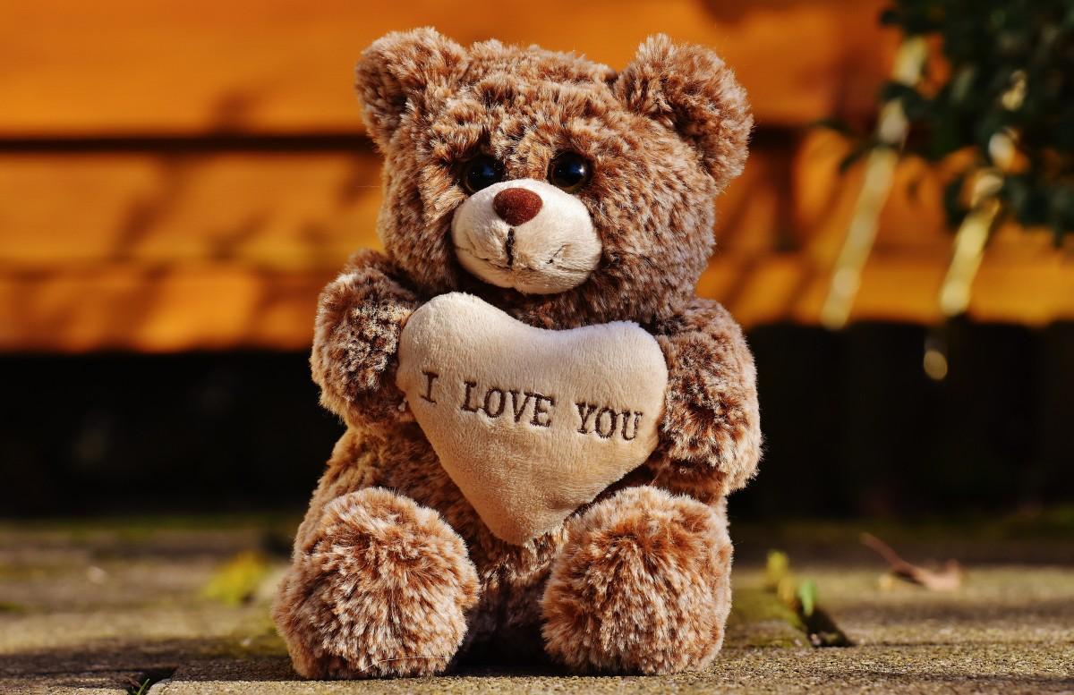 ilmaisia kuvia makea puun lehti s p karhu rakkaus syksy romanssi romanttinen yst vyys. Black Bedroom Furniture Sets. Home Design Ideas