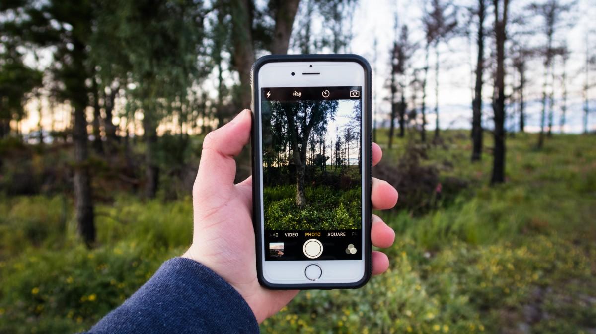 почему получаются темные фотографии на смартфоне джульеттой