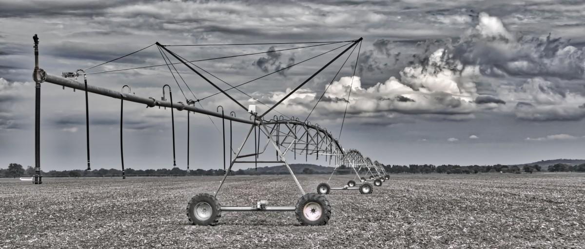 деловых картинки на ферме ураган здесь