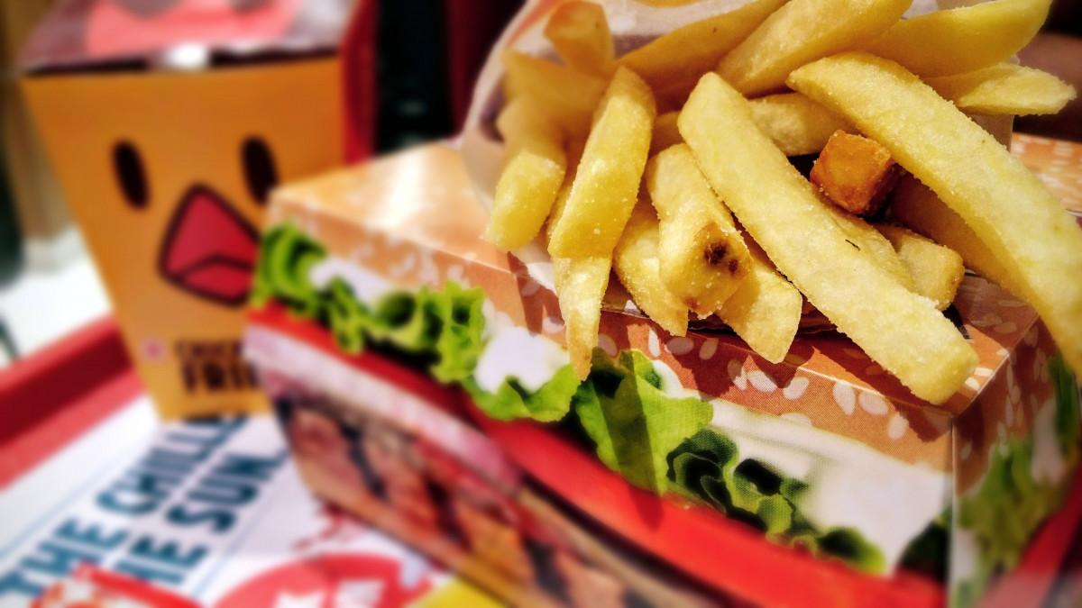 hamburger fast food essay