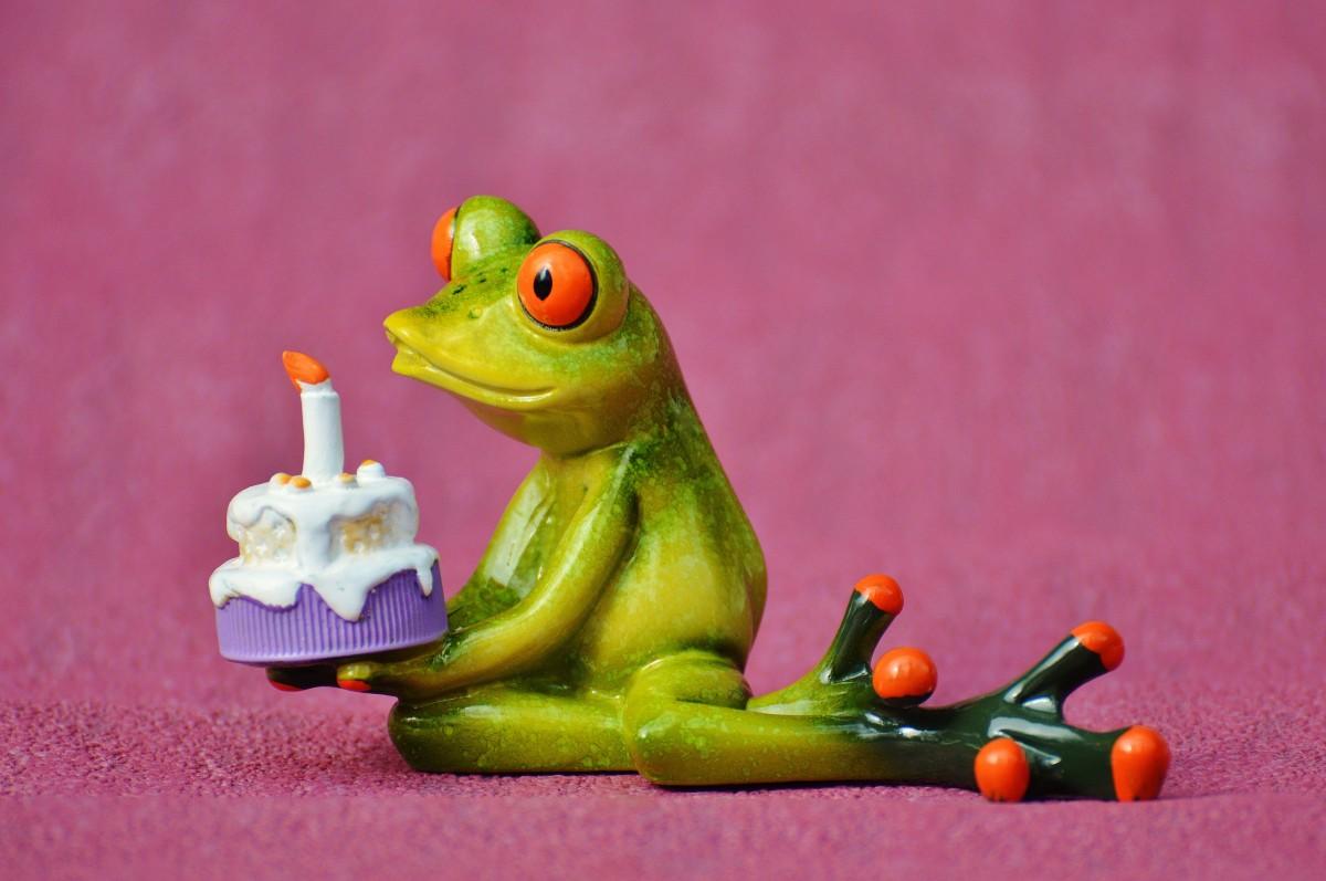 Поздравительная открытка лягушка